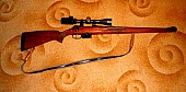 Remington 222